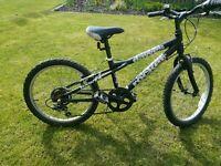 Dawes Rocket 20 inch bike