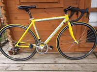 """Fondriest Mega with Campagnolo Xenon hubs and gears 20"""" frame. 51cm. Fully working"""