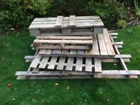 5 old pallets FREE