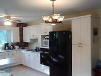 looking to remodel your kitchen !