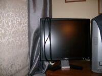 Dell 19 inch monitor screen
