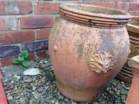XL terracotta garden pot planter