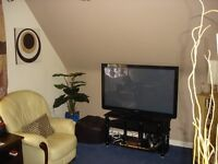 1bed flat Colchester for 1 bed flat near coast