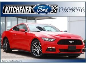 2015 Ford Mustang LEATHER/6 SPEED MANUAL/PWR GROUP/LOW MILEAGE!