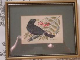 BLACKBIRD - CASH'S WOVEN FINE SILK PICTURE