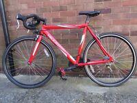 Vittesse Sprint Road Racing bike