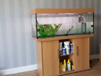 4foot fishtank on stand comes with everything you need to set up allso a verey large ship