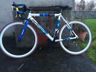 Barracuda Men's Team Bike Road Bike - White/Blue