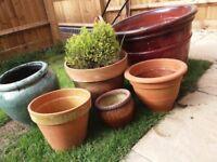 Collection of Garden Pots