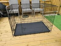 XXL dog create puppy training