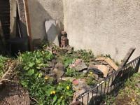Bricks rubble soil