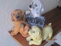 Ornamental Puppies