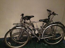 Raleigh Classic Bikes