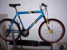 large mans bike