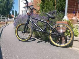 BMX KINK KICKER 18 inch