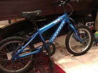 Blue Kids bike 16 inch wheel ridgeback