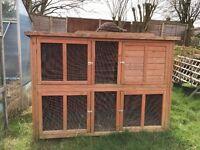 'Bluebell Hideway' Rabbit or Guinea Pig Hutch