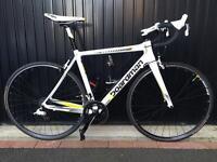 Boadman Team Carbon Road Bike