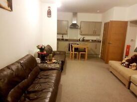 Swindon Luxury 1 bed flat - new build, built in fridge, washing machine and oven