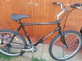 Solid Trek Gents Mountain Bicycle Fully Serviced