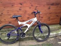 Unisex Challenge Mountain Bike