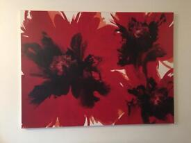"Very large red poppy canvas picture 47""x35"""
