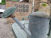 GALV STEEL WATERING CAN