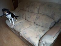 Comfy settee - puppy damage