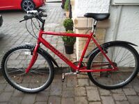 "Red Raleigh 18"" Mountain Bike"