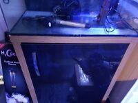 tropical or marine fish tank aaua one 130