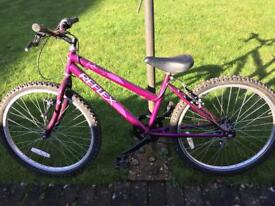 Reflex Children's Bike