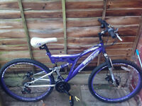Dunlop Mountain bike in a very good condition (Purple)