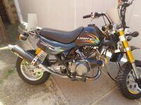 Lifan monkey bike