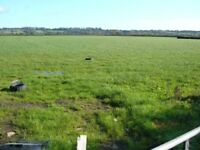Freehold Plots for sale in Wincanton, Somerset, South West England