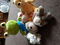 Teddy Bears Animals