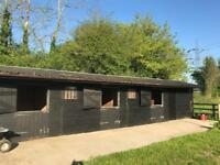 equestrian - 2 stables and grazing in the CO9 area at a small private yard with arena