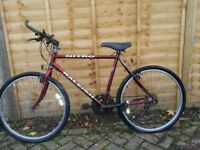 Raleigh Nitro Bike For Sale