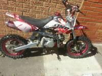 Pit bike motorbike stomp 120