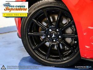 2016 Ford Mustang GT Premium>>>CAP unit- 6-speed manual<<< Windsor Region Ontario image 6