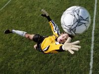 Willing Goalkeeper wanted. Tuesdays and Wednesday 8-9pm Horsforth