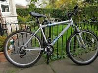 Raleigh mustang mountain bike mens