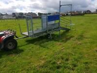 Harrington sheep handling docking clipping mobile race trailer