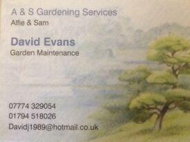 Gardener / General Maintenance