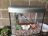 75l fish tank v g c full set up with 2 x lights filter heater lid nice gravel ornament all work