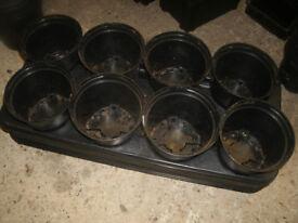 Plastic Pot Trays and Pots