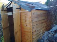 8 x 6 ft BillyOh Tongue & Groove Apex Shed ***RESERVED PENDING COLLECTION***