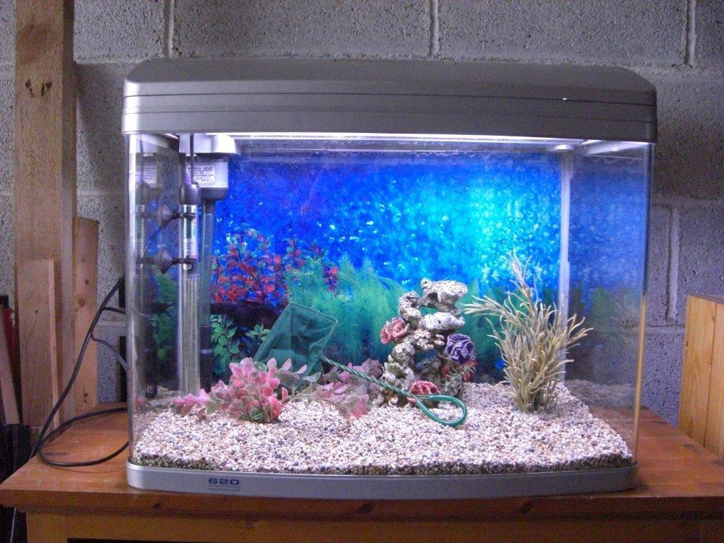For Sale Aqua One Ar 620 620t Fish Tank Aquarium In