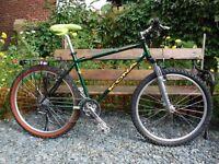 1998 Kona Lava Dome Race Light Mountain Bike