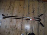 Child's cross country ski poles 110cm
