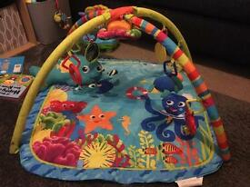 Ocean playmat gym